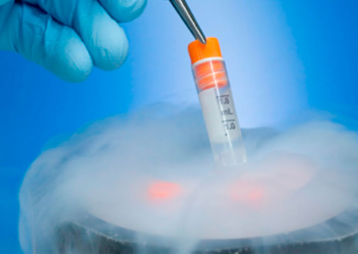 криоконсервация эмбрионов